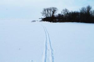Books, skiing, Schmoker's 045