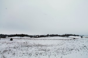 Winter Dunes 060