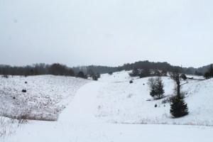 Winter Dunes 065