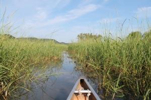 honey-and-canoeing-163